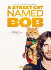 A Street Cat Named Bob FullHD izle