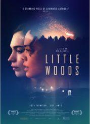 Little Woods – Türkçe Altyazılı
