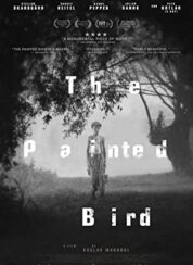 Boyalı Kuş The Painted Bird